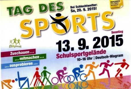 Tag-des-Sportes-2015-Plakat-733x500